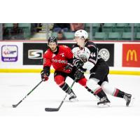 Vancouver Giants defenceman Bowen Byram vs. the Prince George Cougars