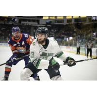 Florida Everblades forward Michael Neville