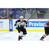 Vancouver Giants forward Cole Shepard