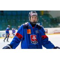 Slovakian Forward Alex Geci