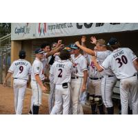 St. Cloud Rox celebrate in the dugout