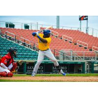 Jabari Henry of the Sioux Falls Canaries at the plate