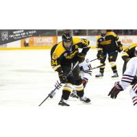 Forward Christopher Wilkie with Colorado College