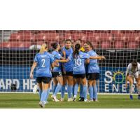 Chicago Red Stars huddle up after a goal