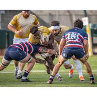 NOLA Gold's Malcolm May in action