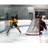Maryland Black Bears vs. the Danbury Hat Tricks