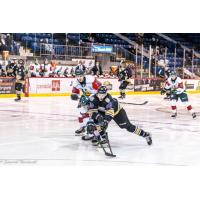 Charlottetown Islanders centre Justin Gill (18) vs. the Halifax Mooseheads