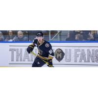Forward Aaron Luchuk with the Newfoundland Growlers