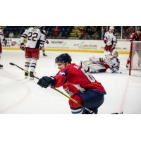 Forward Danick Martel with the Springfield Thunderbirds