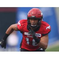 Calgary Stampeders defensive back Royce Metchie