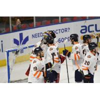 Greenville Swamp Rabbits celebrate a win