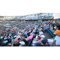 Fans enjoy a game at The Ballpark at Jackson, home of the Jackson Generals
