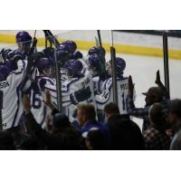 Tri-City Storm celebrate a goal against the Omaha Lancers