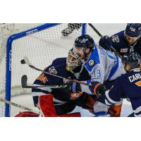 Greenville Swamp Rabbits try to keep the Jacksonville Icemen at bay