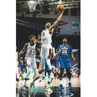Canton Charge guard Levi Randolph collects a rebound vs. the Westchester Knicks