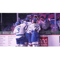 Wichita Thunder celebrate a goal