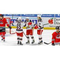 Grand Rapids Griffins celebrate a goal against the Rockford IceHogs