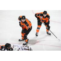 Lehigh Valley Phantoms forwards Max Willman and Tanner MacMaster line up against the Hershey Bears