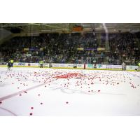 Toss a Tomato, Win Some Dough with the Maine Mariners