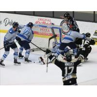 Wheeling Nailers react after a goal against the Jacksonville Icemen