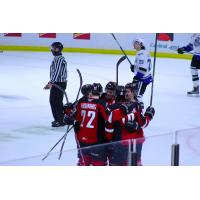 Vancouver Giants celebrate a goal against the Victoria Royals