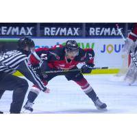 Vancouver Giants centre Justin Sourdif faces off with the Victoria Royals