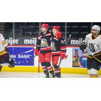 Grand Rapids Griffins vs. the Chicago Wolves