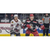 Grand Rapids Griffins vs. the Rockford IceHogs