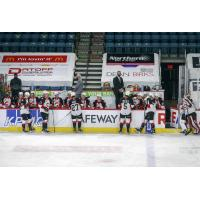 Prince George Cougars bench vs. the Vancouver Giants