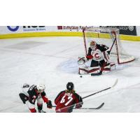 Prince George Cougars goaltender Taylor Gauthier stops a shot vs. the Vancouver Giants