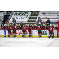 Vancouver Giants bench vs. the Prince George Cougars