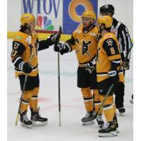 Wheeling Nailers gather after a goal