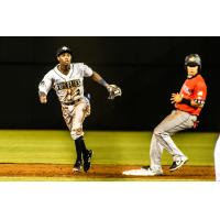 Tyler Tolbert of the Columbia Fireflies in the field vs. the Charleston RiverDogs