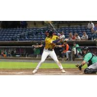 Rome Braves at the plate