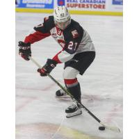 Riley Heidt of the Prince George Cougars