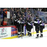 Reading Royals celebrate a goal along the bench