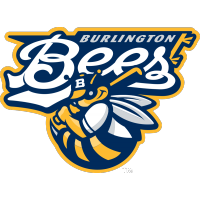 MWL Burlington Bees